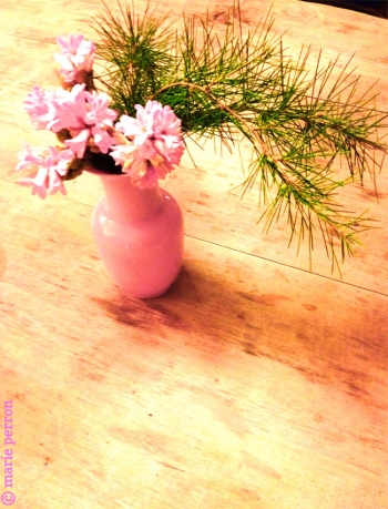 Link to Nantes: Petit bouquet d'hiver