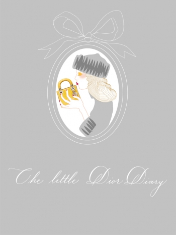 Link to The Little Dior Diary